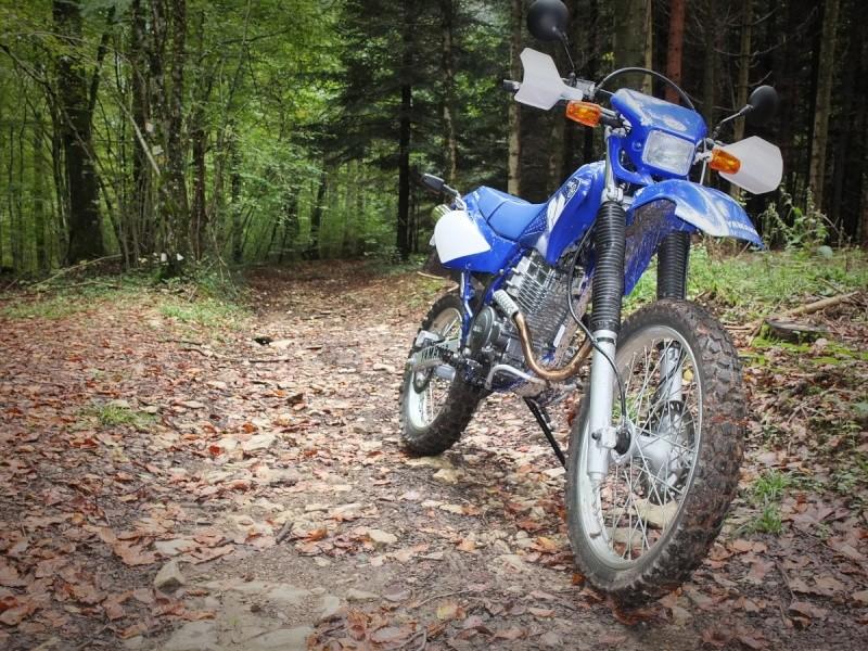 La CRF250L, la TTR 250, bref, les trails/enduro légers....quelqu'un a déjà essayé ? Et la Beta Alp 200cc....? - Page 6 Dscf4815