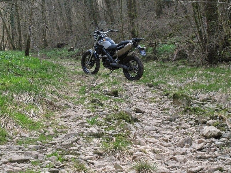 Et la Honda CB500X ?  Img_2310