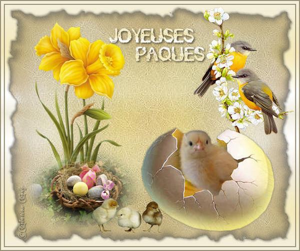 Pâques - Page 3 56098710