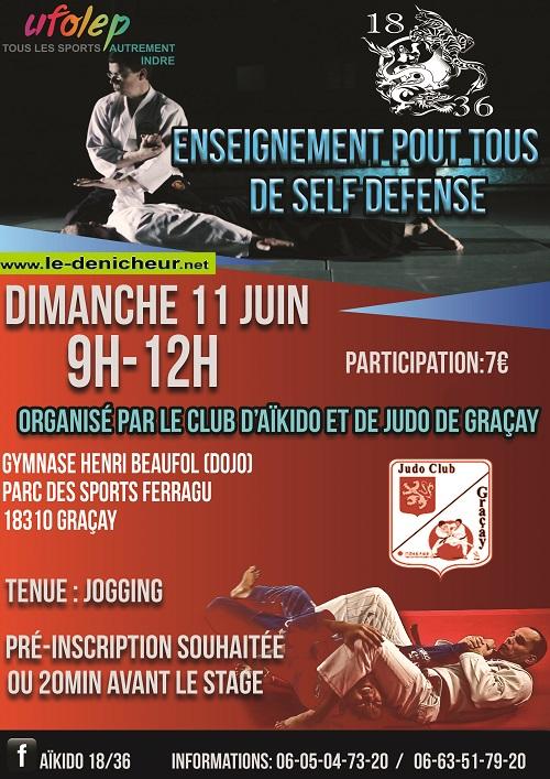 GRACAY - Dimanche 11 juin - Enseignement pour tous de Self Défense 06-1514