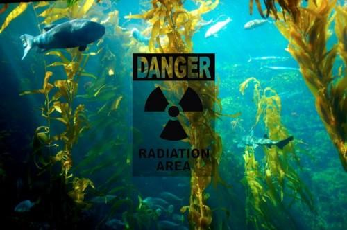 États-Unis : la présence de césium radioactif (de Fukushima) sur la côte ouest est confirmée  13920410