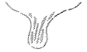 Rudolf Steiner : La création de l'homme par les Archées depuis la Lémurie jusqu'à la fin du monde. Les Esprits du Temps. Les Esprits de la Forme Steine10