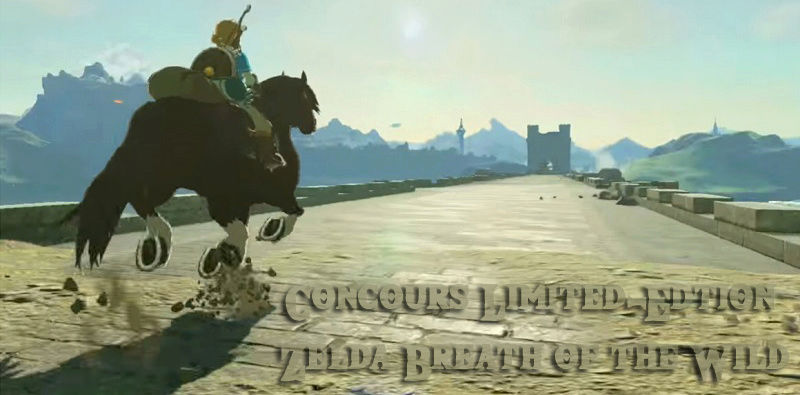 Concours: The Legend of Zelda: Breath of the Wild Sdcqdq10