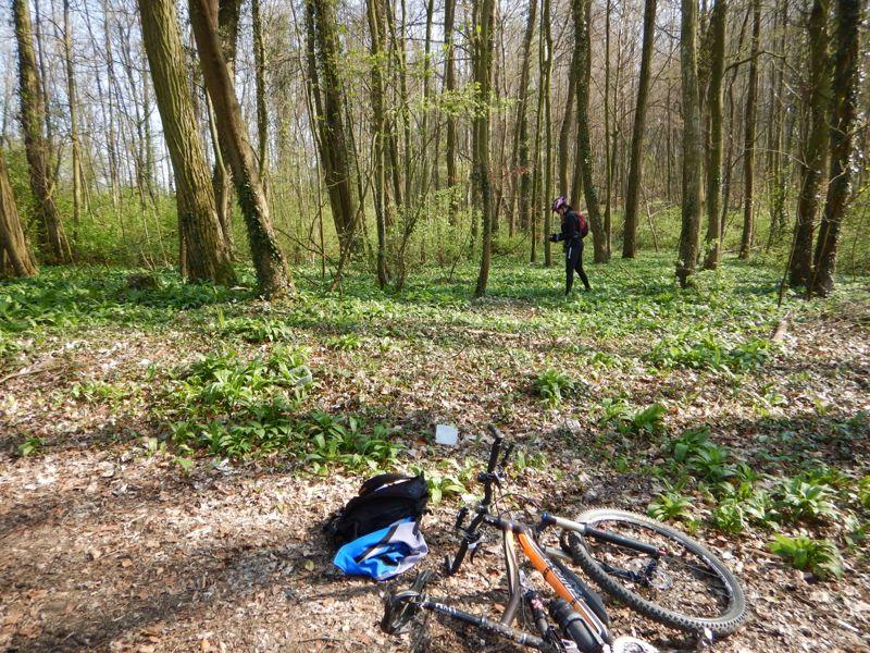 Toutes & Tous à Vélo à LRV - Reprise de printemps Dscn0336