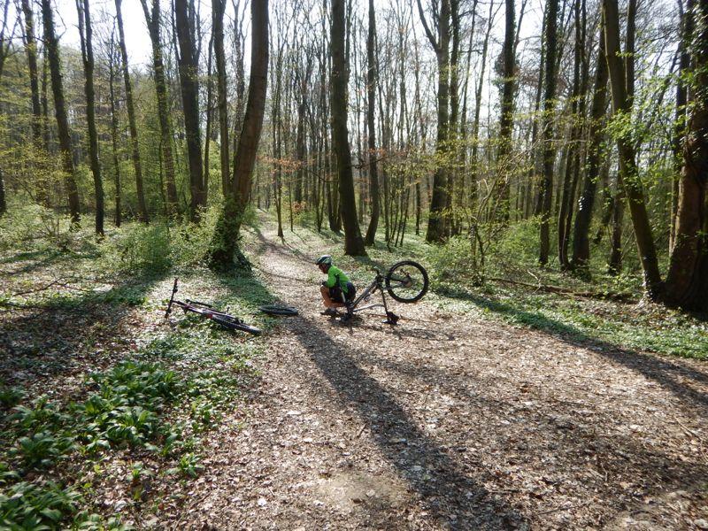 Toutes & Tous à Vélo à LRV - Reprise de printemps Dscn0337