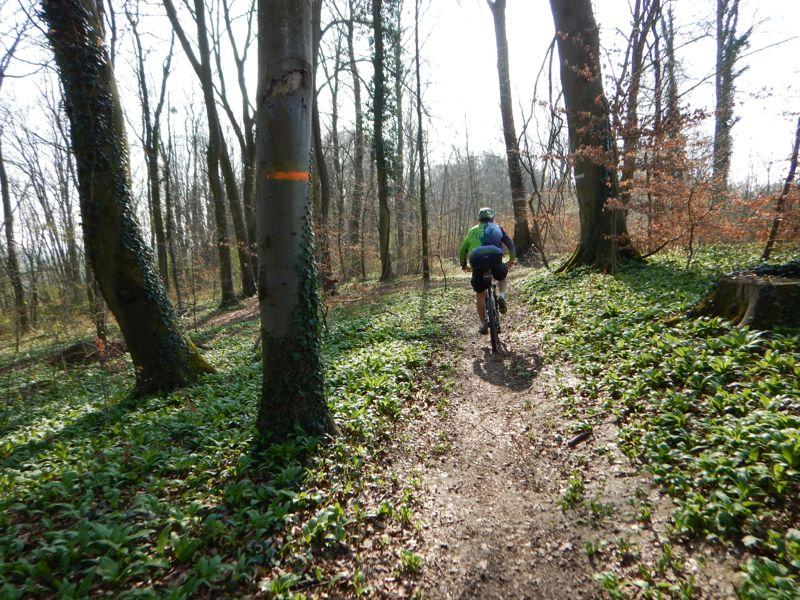 Toutes & Tous à Vélo à LRV - Reprise de printemps Dscn0344