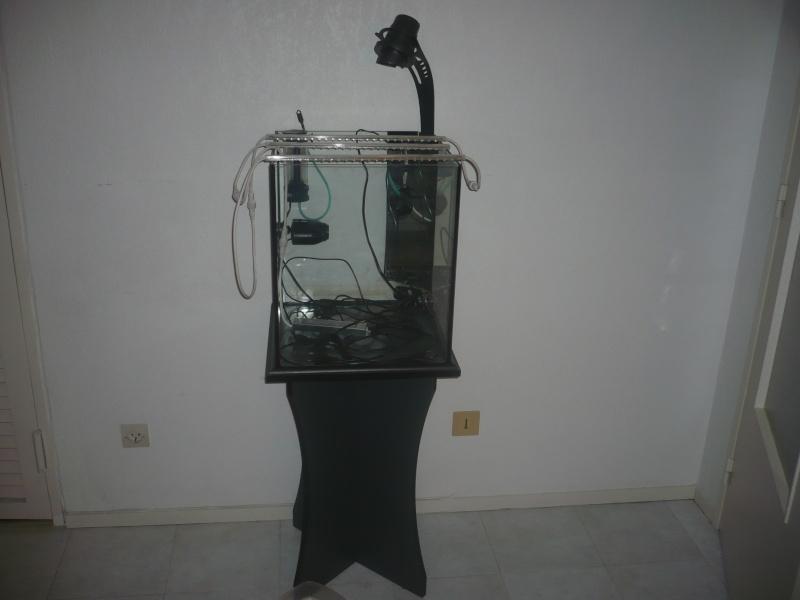 Mon cube 60L P1040410