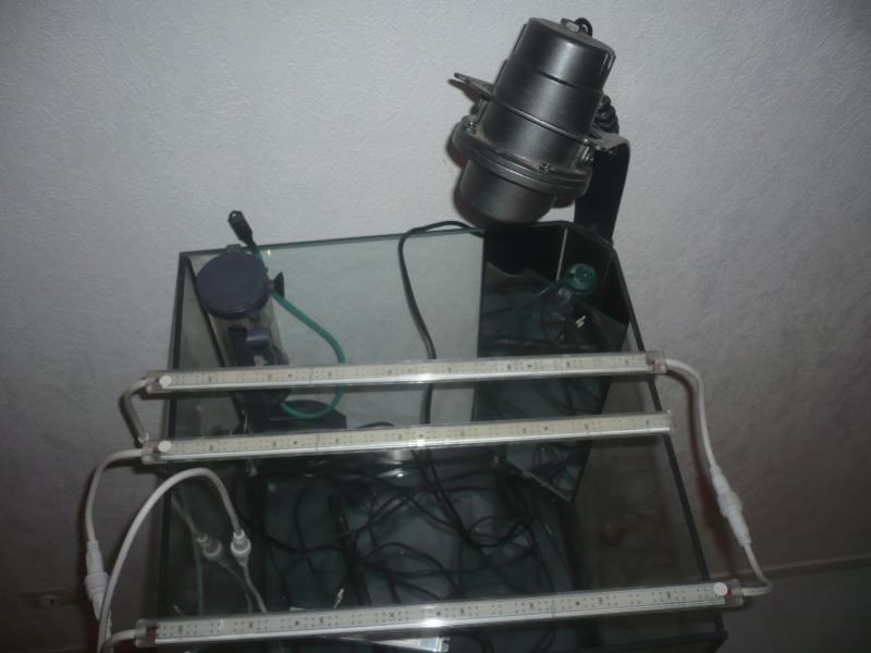 Mon cube 60L P1040411