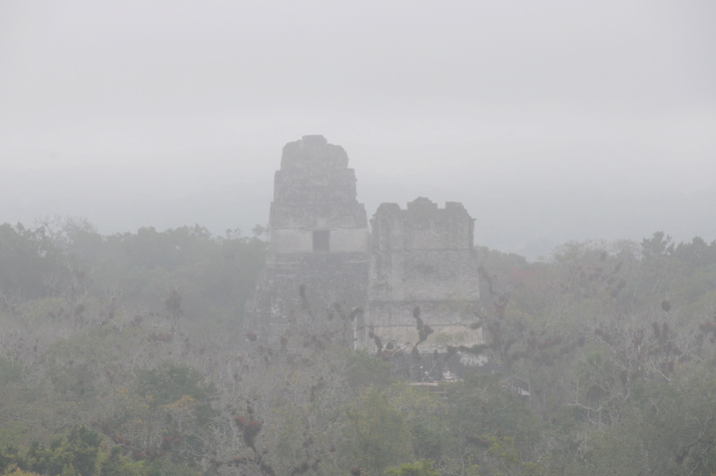 Les sites archéologiques de la péninsule du Yucatan Dsc_9416