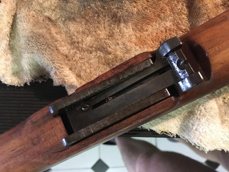 fusil steyr Img_0218