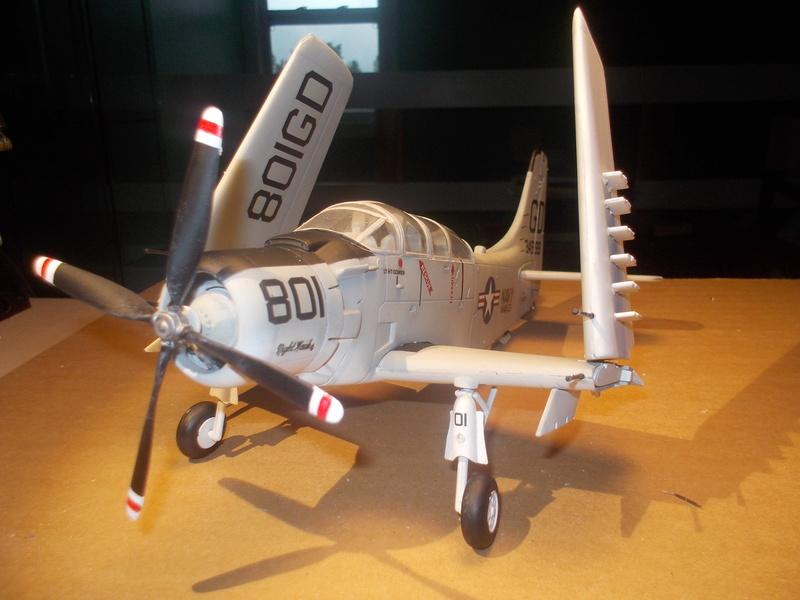 Skyrider AD-5 escala 1/48 Dscn3112