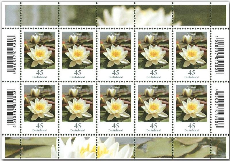 Blumengruß aus Deutschland - Seite 2 Seeros10