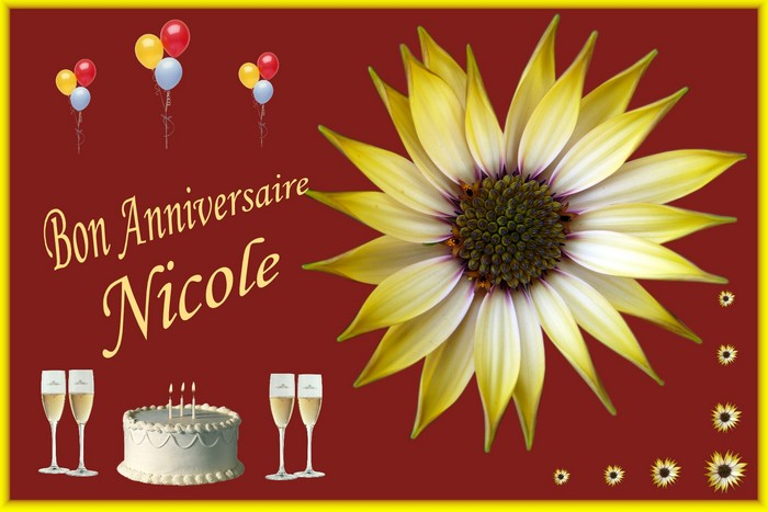 joyeux anniversaire Nicole Img_5012