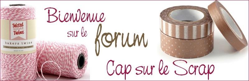 Bienvenue sur le forum Cap sur le scrap