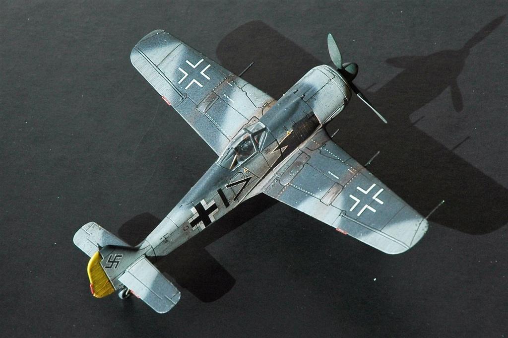 FW 190A8 - EDUARD ROYAL CLASS + Brassin -1/72 + projet diorama (Trois avions terminés) - Page 10 Dsc_6410