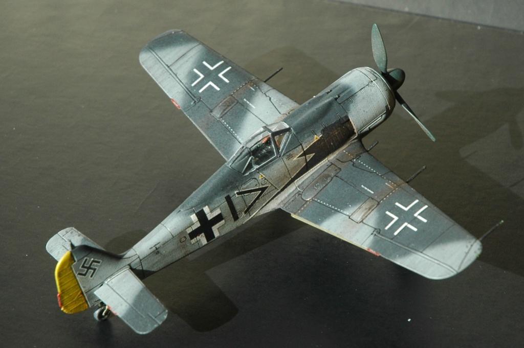 FW 190A8 - EDUARD ROYAL CLASS + Brassin -1/72 + projet diorama (Trois avions terminés) - Page 10 Dsc_6411