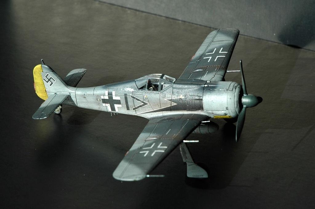 FW 190A8 - EDUARD ROYAL CLASS + Brassin -1/72 + projet diorama (Trois avions terminés) - Page 10 Dsc_6412