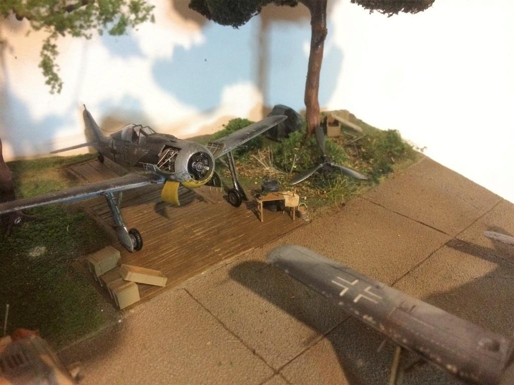 FW 190A8 - EDUARD ROYAL CLASS + Brassin -1/72 + projet diorama (Trois avions terminés) - Page 8 Img_7767