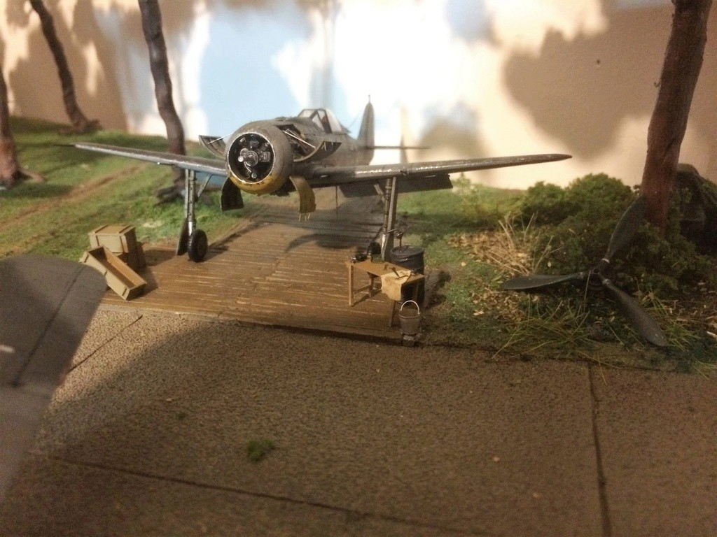 FW 190A8 - EDUARD ROYAL CLASS + Brassin -1/72 + projet diorama (Trois avions terminés) - Page 8 Img_7768