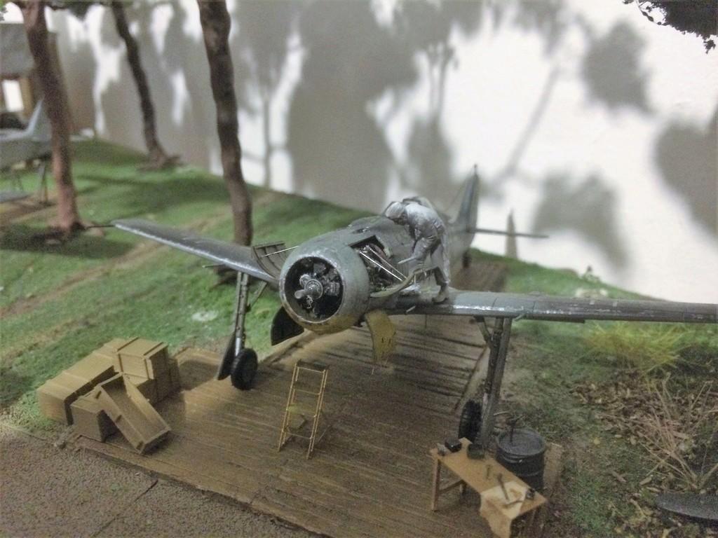 FW 190A8 - EDUARD ROYAL CLASS + Brassin -1/72 + projet diorama (Trois avions terminés) - Page 8 Img_7810