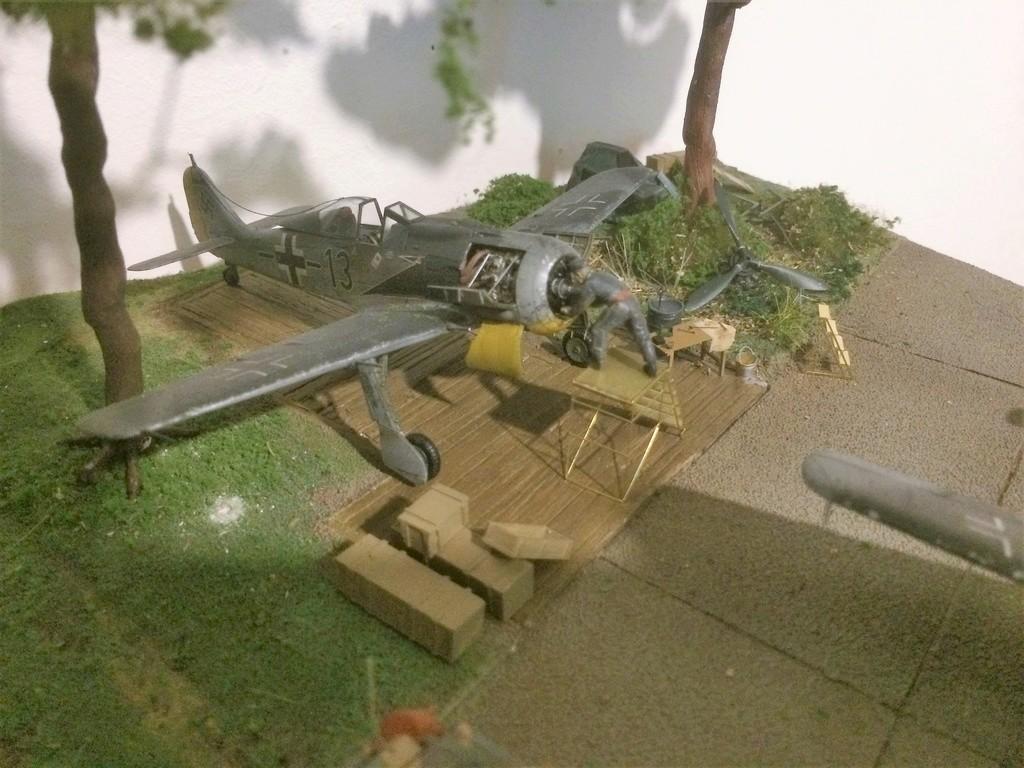 FW 190A8 - EDUARD ROYAL CLASS + Brassin -1/72 + projet diorama (Trois avions terminés) - Page 8 Img_7811