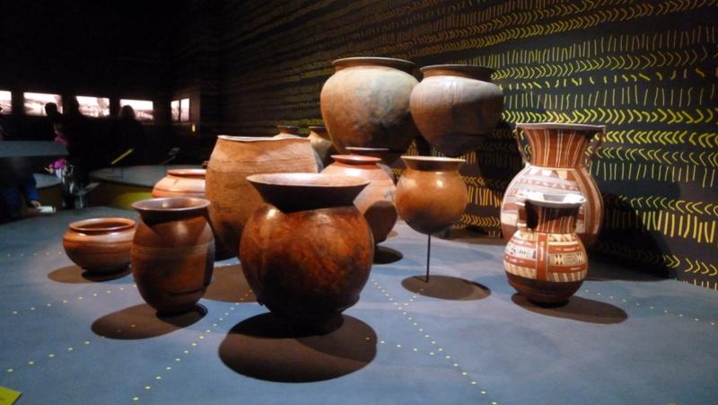 Musée des confluences LYON P1080314