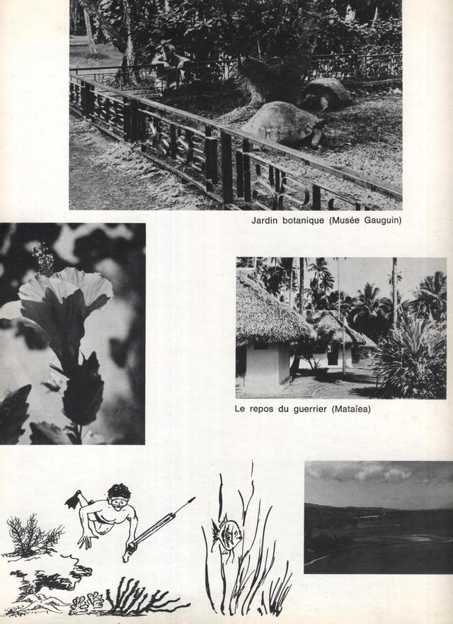 JAUREGUIBERRY (EE) - Page 11 J2710