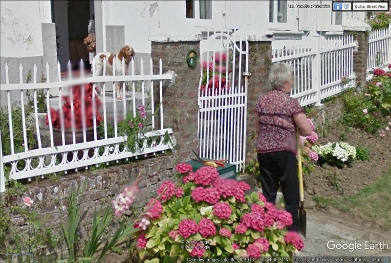 TOUR DE FRANCE VIRTUEL - Page 9 Fleurs10