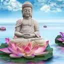 Les religions monothéistes et autres Bouddh10