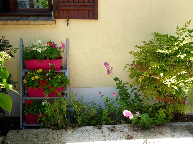 Un petit tour au jardin Chambr10