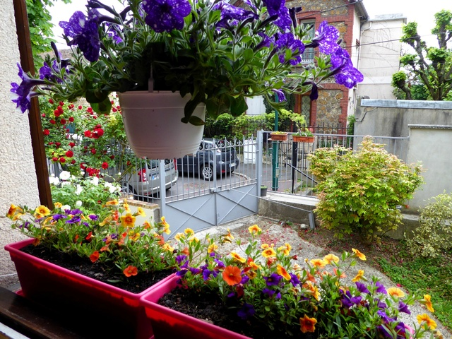 Un petit tour au jardin Jardin10