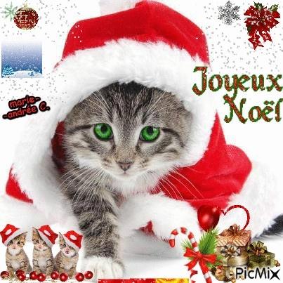 joyeux Noel à tous 21775510