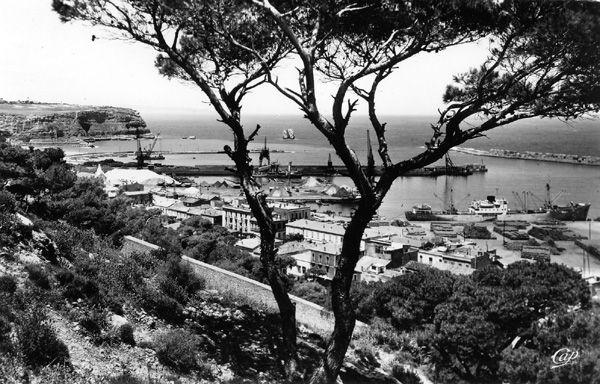 ALGERIE - NEMOURS MARINE - ORAN et TLEMCEN 50923610