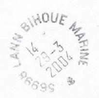 LANN-BIHOUE - MARINE F15