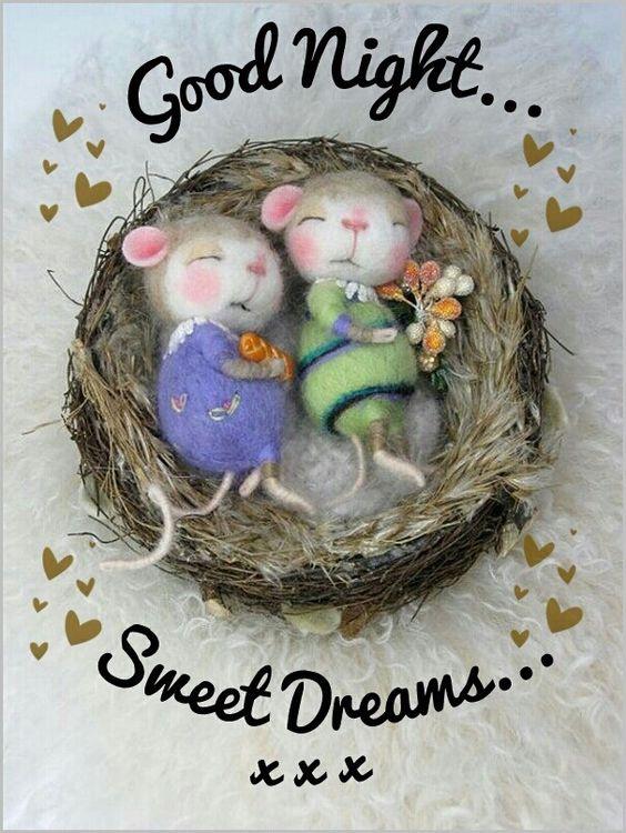 Bonne nuit - Page 4 0ae84110