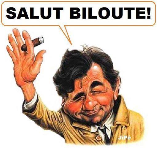 Bonjour à tous Bilout12