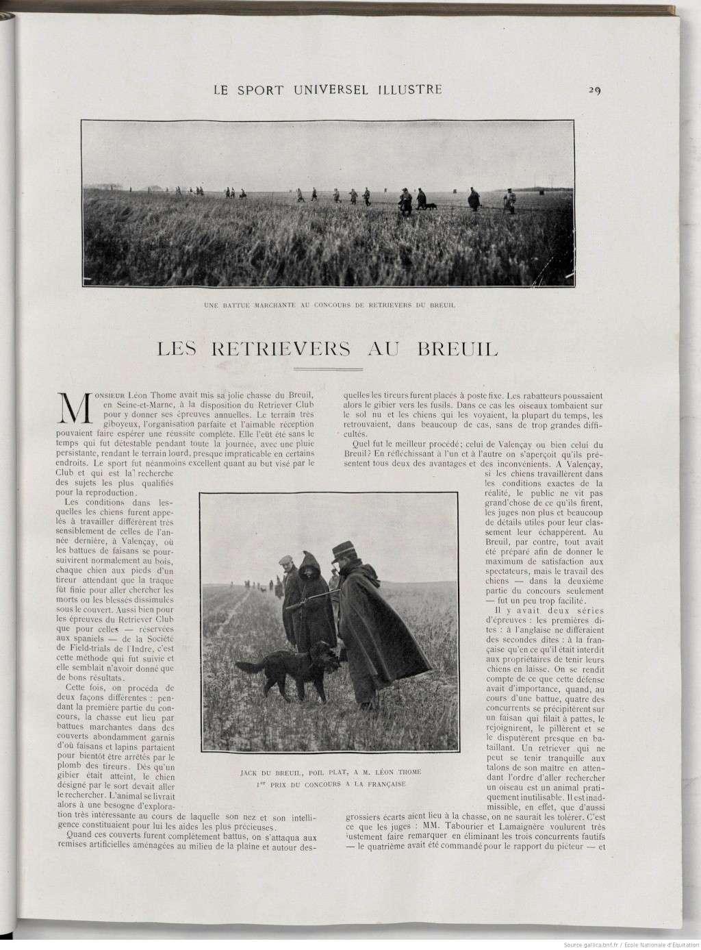 Les Retrievers au Breuil... Test117