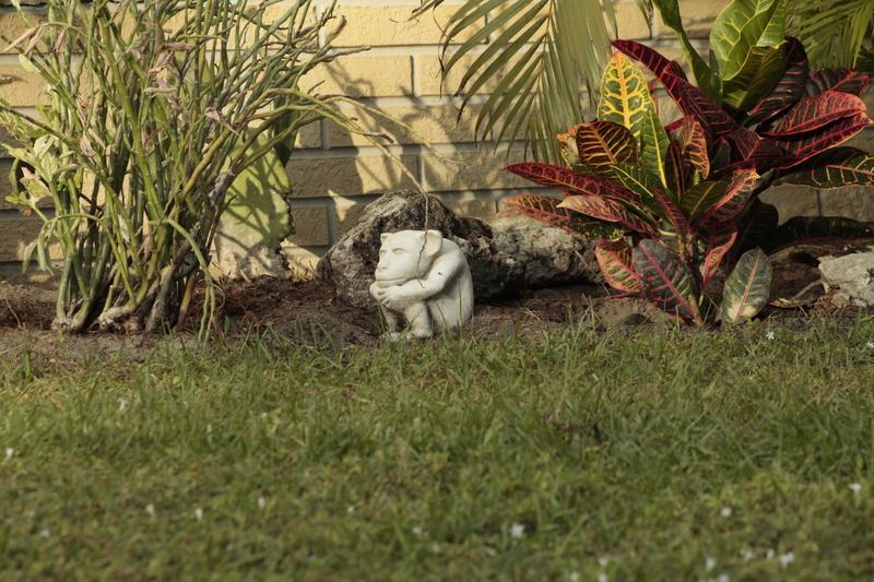décorations de parterre, Barefoot Bay, Floride, États-Unis  _mg_6510