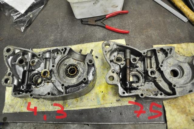 Moteur 75 cc flandria Dsc33410