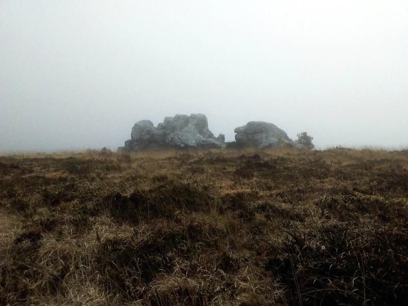 Virée dans les Monts d'Arrée, en Finistère (Bretagne) - Page 2 Img_2015