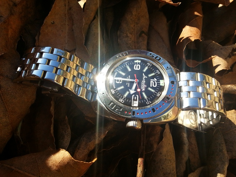 Ma Vostok Amphibian Classic 710640 20131210