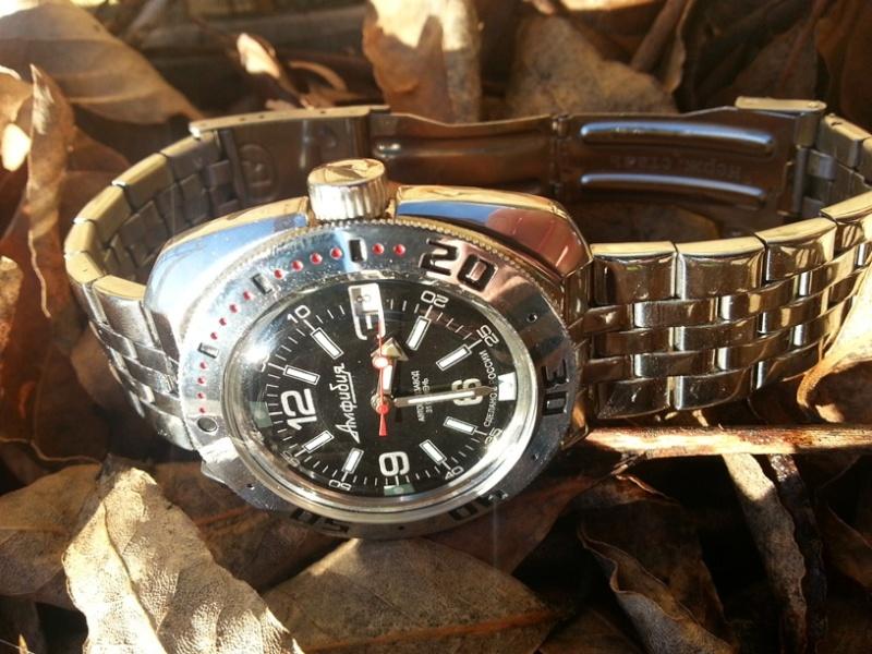 Ma Vostok Amphibian Classic 710640 20131213
