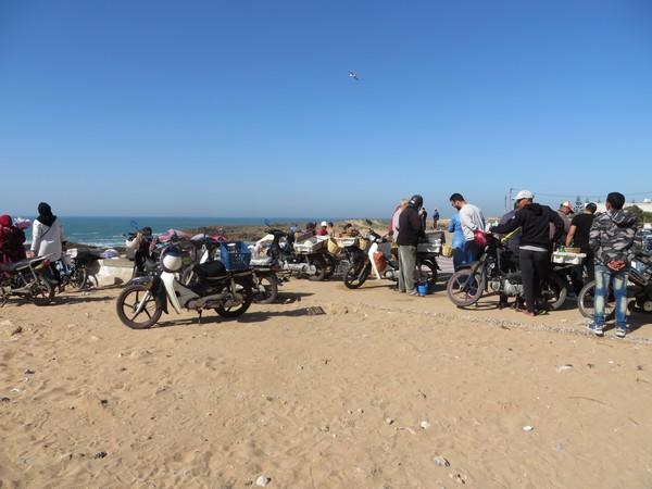 [Maroc Camp/Dernières nouvelles] OUALIDIA Oualid20