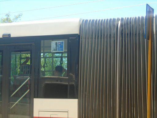 Circulan en ómnibus de Santiago de Cuba carteles por la liberación de Eduardo Cardet 11_may10