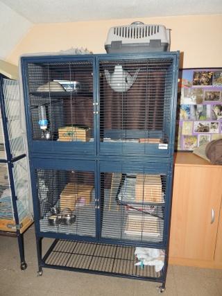 recherche cage savic royal double 01216