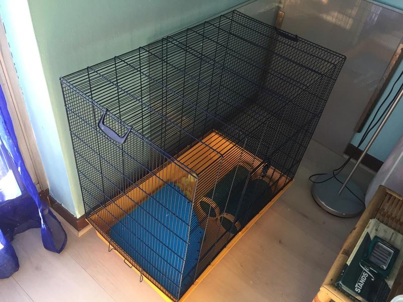 VENTE Cage Freddy 2 Max Img_3416