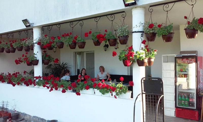 Letnja rezidencija  Lepota10