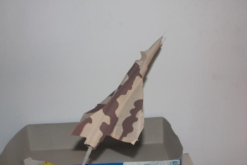 Mirage III ou 5 bien sur....( Kinetic- 1/48 ) - Page 2 Img_2324