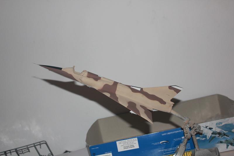 Mirage III ou 5 bien sur....( Kinetic- 1/48 ) - Page 2 Img_2327