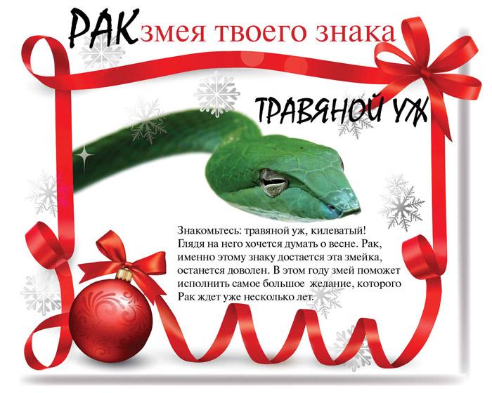ГОРОСКОПЫ ТЕМАТИЧЕСКИЕ 95479810